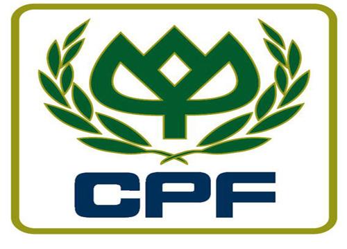 สั่งผลิต รับผลิต แฟลชไดร์ฟพร้อมแพคเกจ สกรีนโลโก้ ขายส่งแฟลไดร์ฟยางหยอด CPF